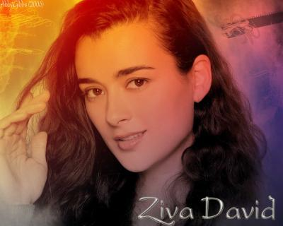 -david - Le monde d'Anthony DiNozzo et de Ziva David - Skyrock.com